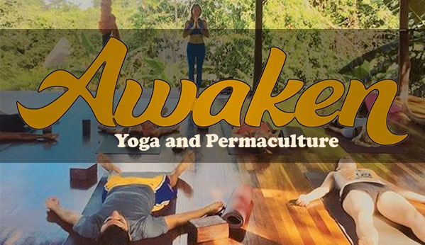 Yoga and Permaculture Retreat