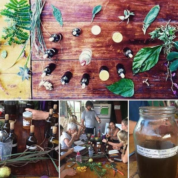 Herbal medicine making class